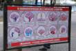 У Мукачеві біля сакур встановили туристичні таблички
