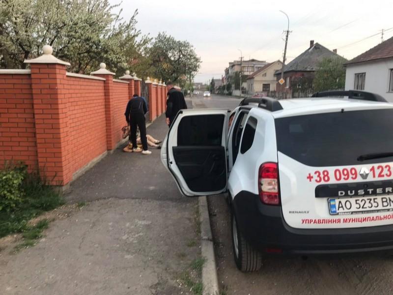 У Мукачеві посеред вулиці лежала жінка у безпорадному стані