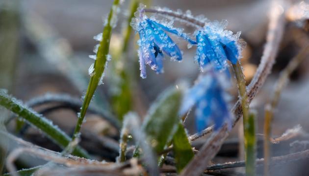 Прогноз погоди на з 16 по 21 квітня