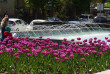 В Ужгороді на площі Поштовій запрацював фонтан