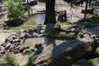 В Ужгороді запрацювали усі фонтани