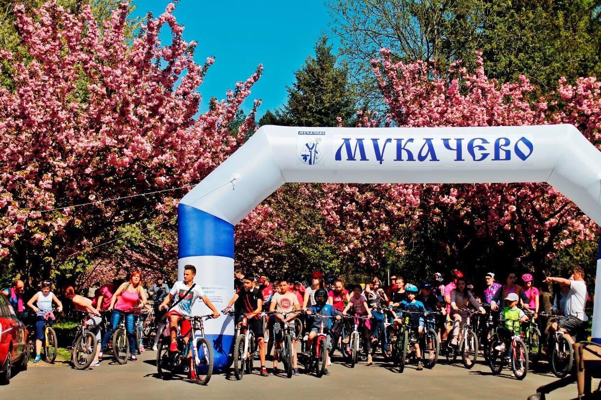 """20 квітня у Мукачеві відбудеться велозаїзд """"сакуровими"""" вулицями"""