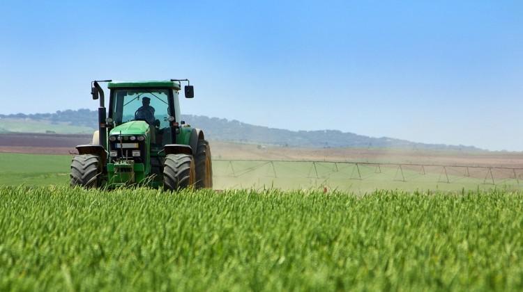 Українські фермери можуть отримати до 500 тисяч гривень допомоги
