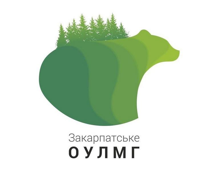 Закарпатські лісівники не погоджуються зі звинуваченням прокуратури