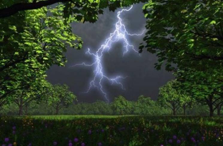 Якою буде погода на Закарпатті цього тижня
