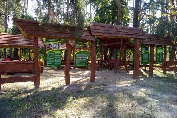 Спеціально до туристичного сезону лісівники оновлюють інфраструктуру