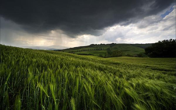 Сонячної погоди поки не буде: синоптики дали невтішні прогнози