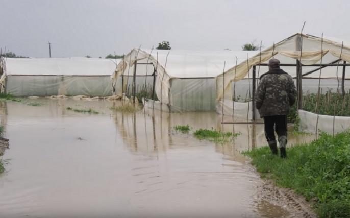 Наслідки злив: води в теплицях на Закарпатті – по пояс