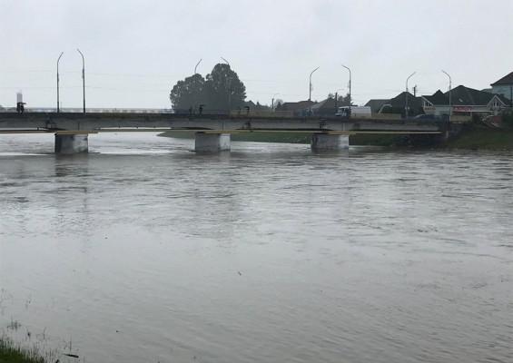 Рівень води в Латориці значно підвищився. Мукачівці б'ють на сполох
