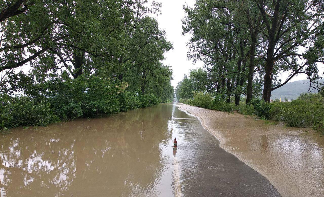 Вода залила відрізок дороги від Сільця до Виноградова