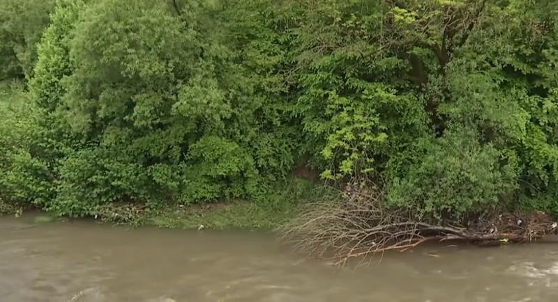Тіло зачепилося за коріння дерев: подробиці трагедії, яка сталася 23 травня на Закарпатті