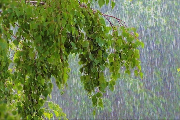 На Закарпатті очікується погіршення погоди: синоптики прогнозують дощі з градом