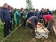 Розкопали могилу та витягли труну: в області провели ексгумацію тіла дівчини, яка загадково загинула