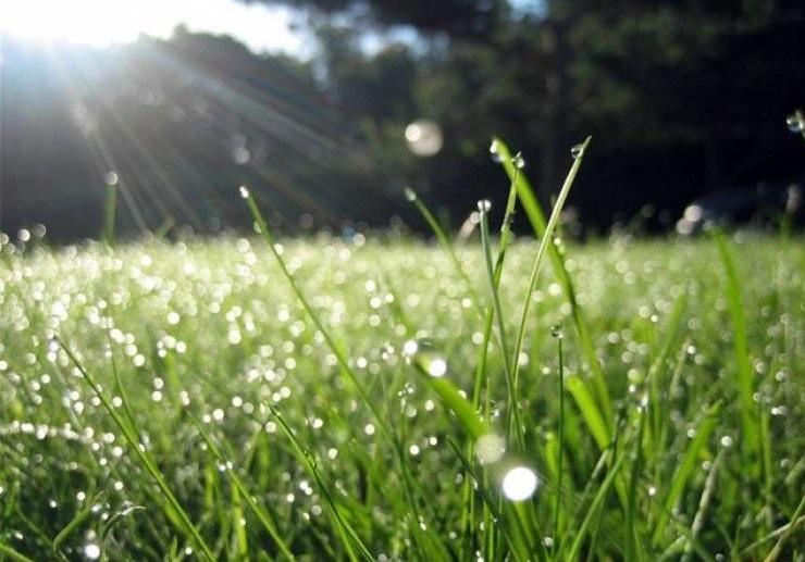 Синоптики розповіли, якою буде погода у перші вихідні літа на Закарпатті
