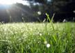 Синоптики розповіли, якою буде погода у перші вихідні літа