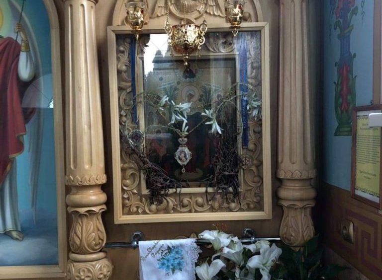 Увосьме в Красногорському монастирі розквітли засохлі лілії
