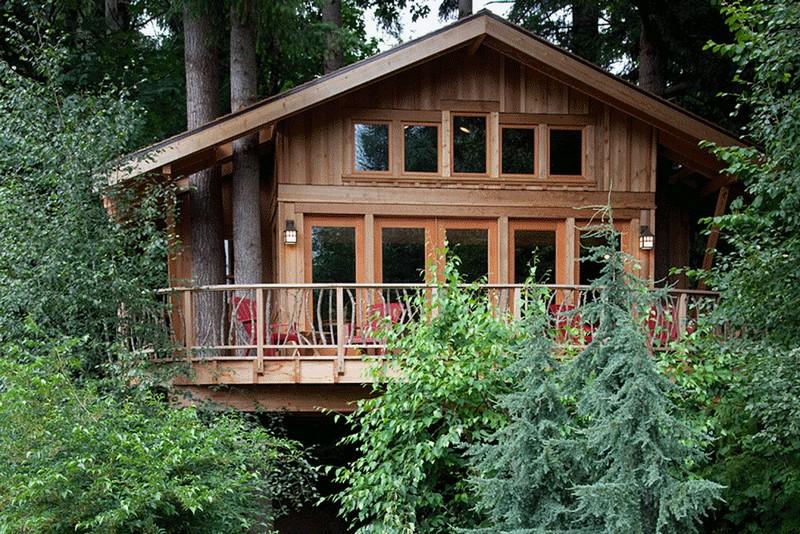 На Тячівщині туристам пропонують пожити в будиночку на дереві