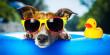 Спекотний тиждень: синоптики дали прогнози