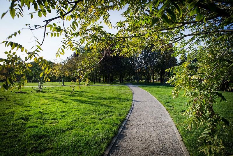 При реконструкції парку в Мукачеві зникли мільйони гривень?