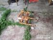 У дворі знайшли мертвого чоловіка