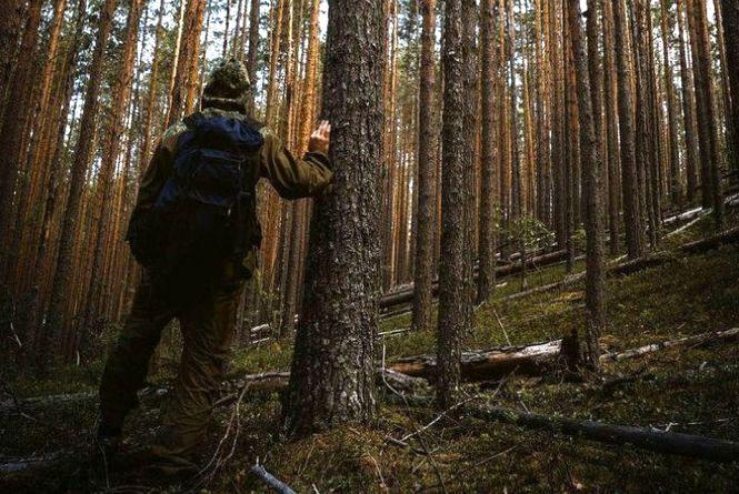 На Свалявщині заблукав чоловік із села Дусино