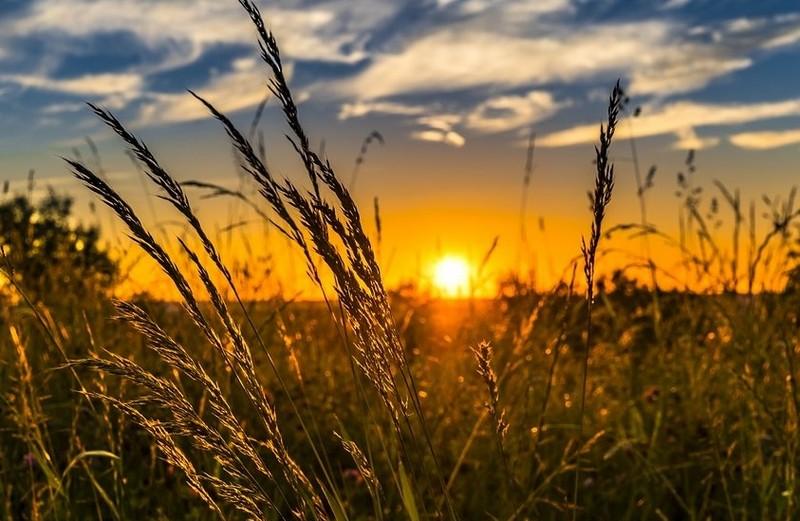 Синоптики розповіли, якою буде погода на Закарпатті у перший тиждень липня