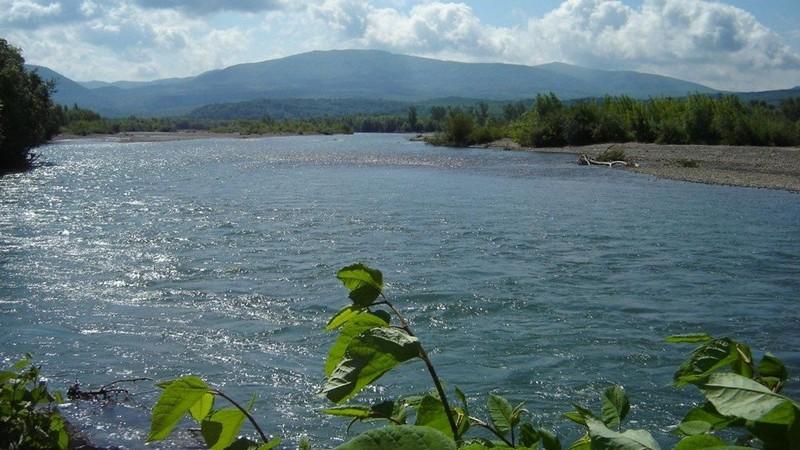Біля селища Королево водолази шукають у річці Тисі ймовірного утопленика