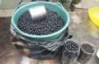На ринку Мукачева ціна за кілограм чорниці зросла вдвічі