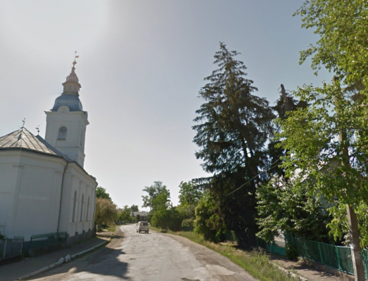 ДТП на Виноградівщині: авто заїхало у чужий двір