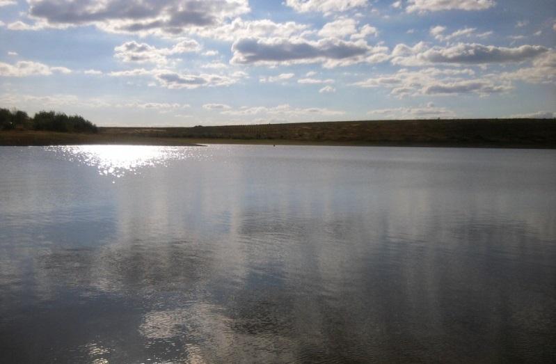 Смертельний відпочинок: в озері на Мукачівщині шукають утопленика