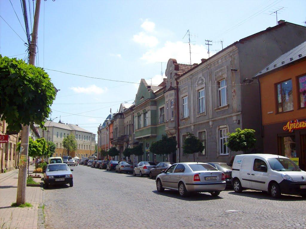 Лежала на тротуарі із розбитими колінами і ліктями: у Мукачеві посеред вулиці Ілони Зріні напали на жінку