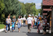 Як у Мукачеві пройшов фестиваль