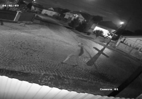 Камери відеоспостереження зафіксували злочин, який скоїли вночі у Мукачеві