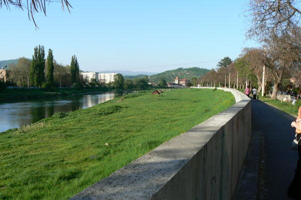 У Мукачеві в Латориці виявили труп чоловіка