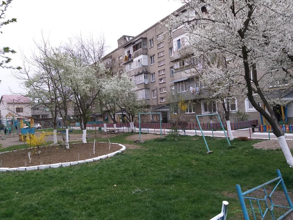Як ОСББ міста Хуст успішно реалізовують європейські ґрантові проекти