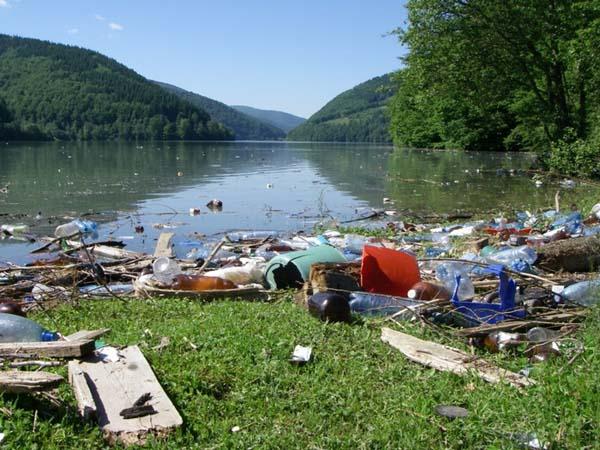 Сміття в річках Закарпаття: чому так і що робити?