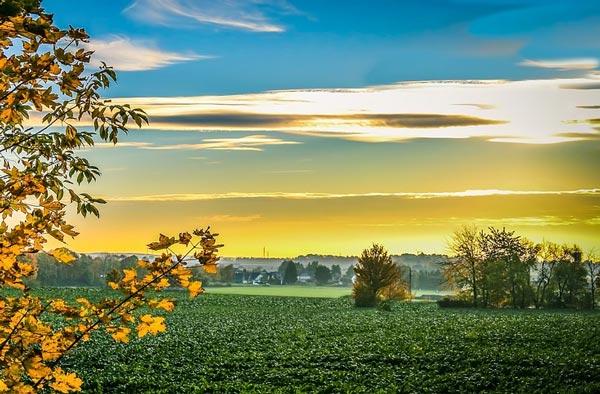 Вихідні у вересні: скільки українці будуть відпочивати в перший місяць осені