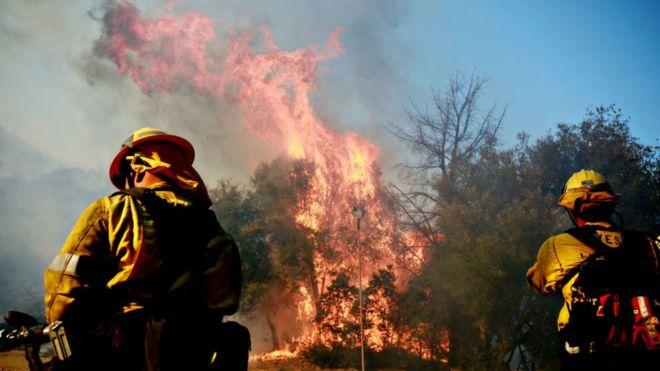 На Закарпатті різко збільшилась кількість пожеж в екосистемах