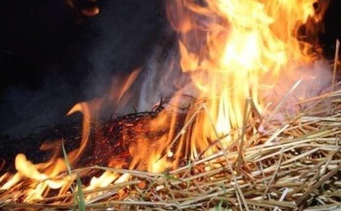 У селі на Мукачівщині згоріло 15 тонн сіна