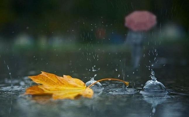 Дощ, туман і вітер: синоптики попереджають про погіршення погоди