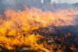 У найближчі дні на Закарпатті буде надзвичайна пожежна небезпека