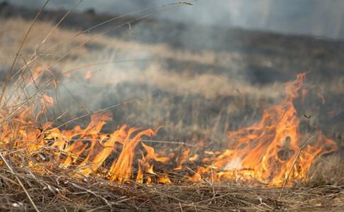 У найближчі дні в області буде надзвичайна пожежна небезпека