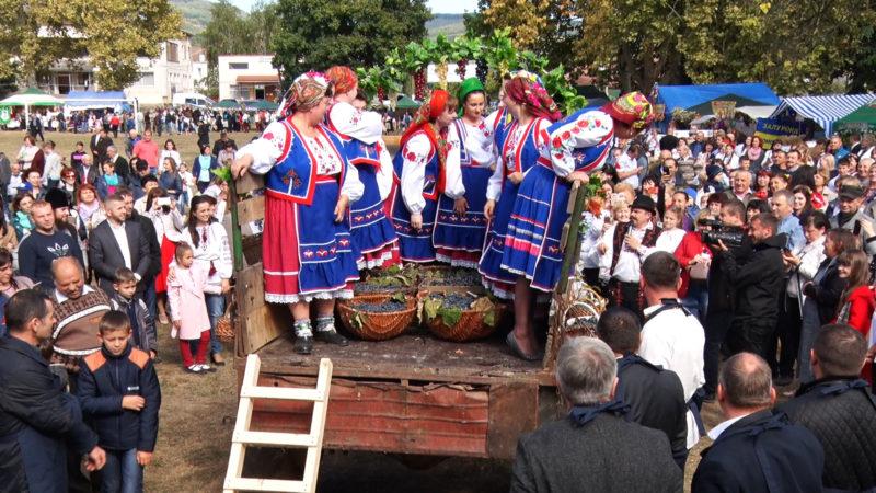 """Мукачівщина готується до фестивалю """"Бобовищенське гроно"""""""