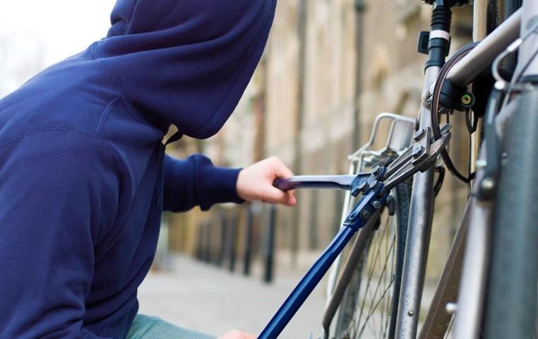 13-річні хлопці обкрадали односельчан