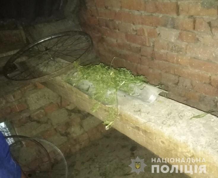 На Мукачівщині у юнака знайшли марихуану