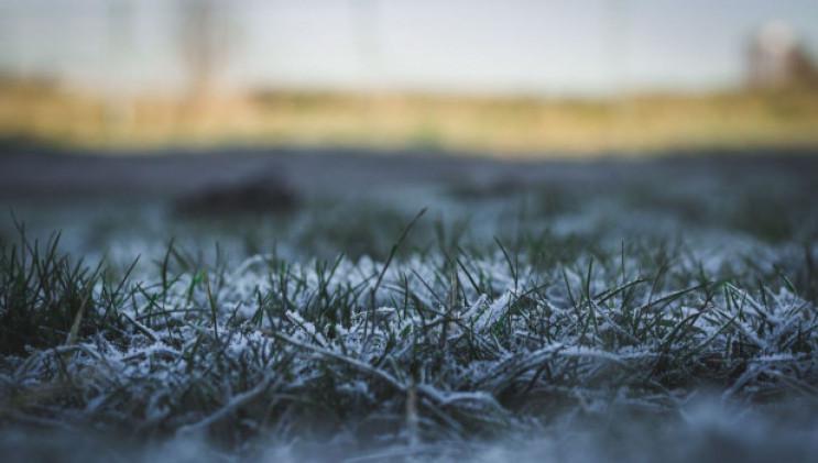 Сніг і морози: синоптики дали прогноз на наступний тиждень