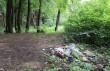 Закарпатські ліси потерпають від горе-відпочивальників