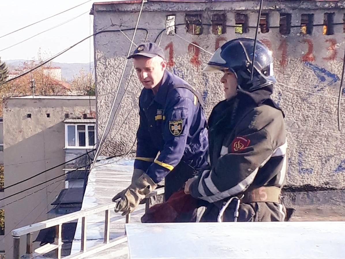 Рятувальники розповіли про порятунок кішки