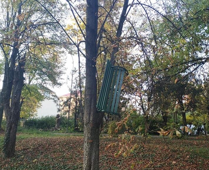 В Ужгороді невідомі повісили на дерево лавицю