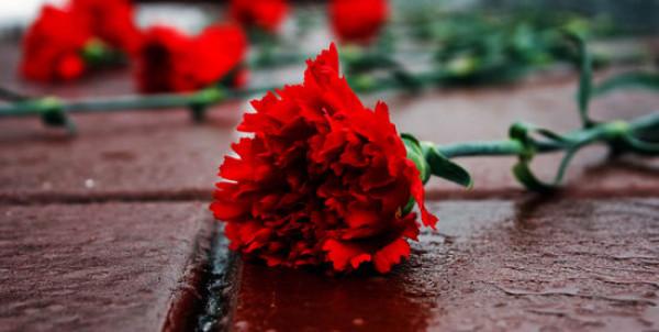 Закарпатців закликають вшановувати покійних виключно живими квітами